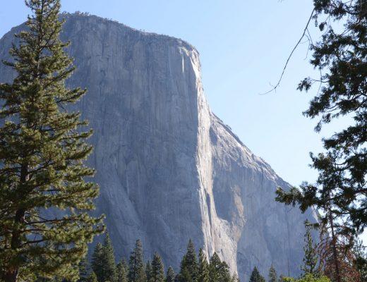 Reisebericht Yosemite Park
