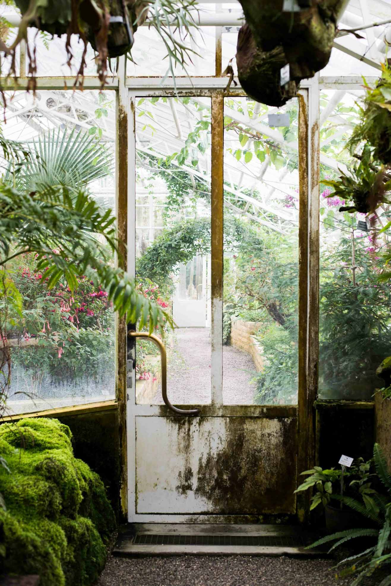 Botanischer Garten in München
