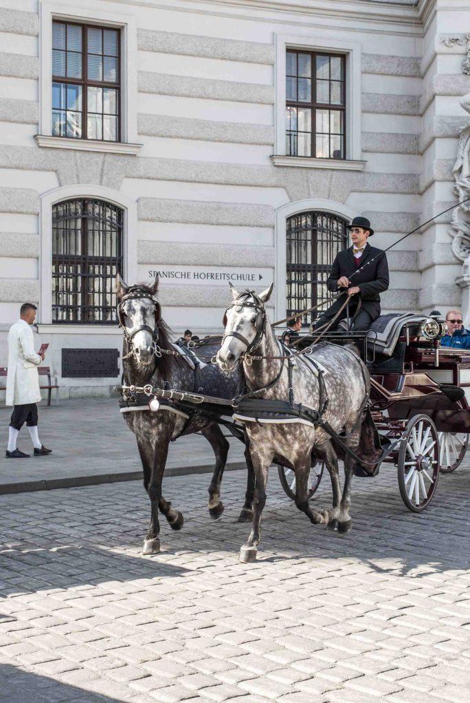 Ein Blog über Wien
