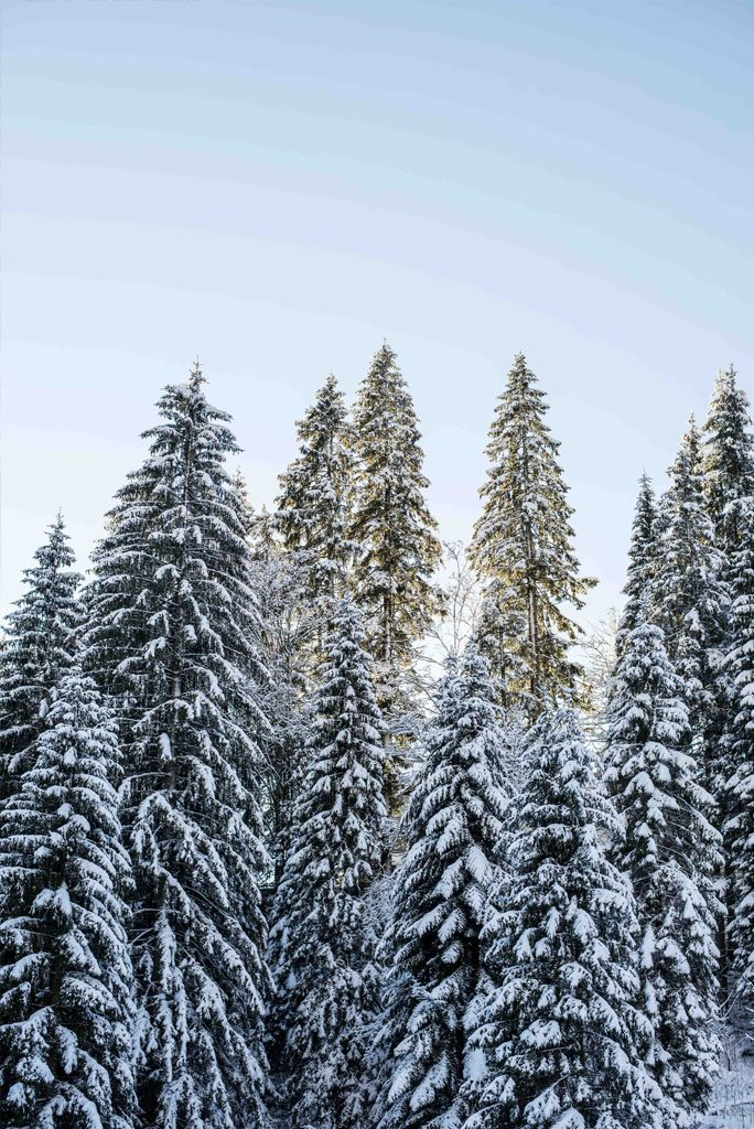 Winterausflug in der Nähe von München
