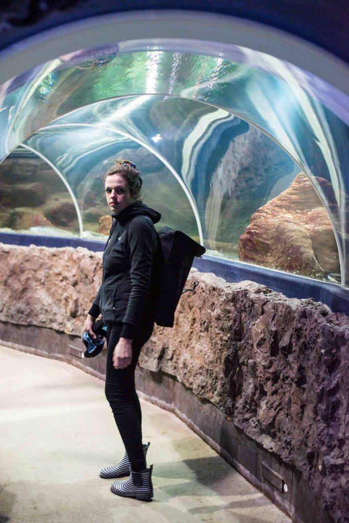 Aquarium in Westerland – Sylt bei Regen