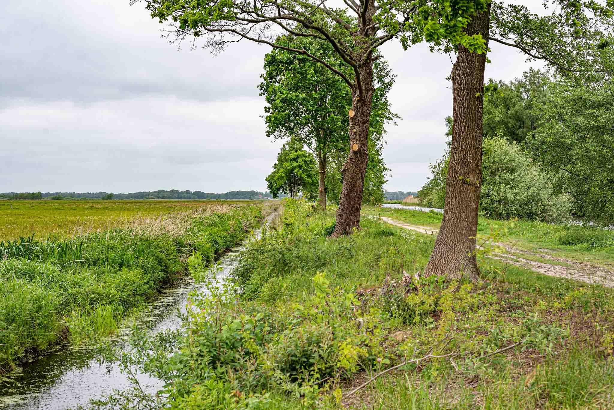Reiseziele im Norden - Worpswede