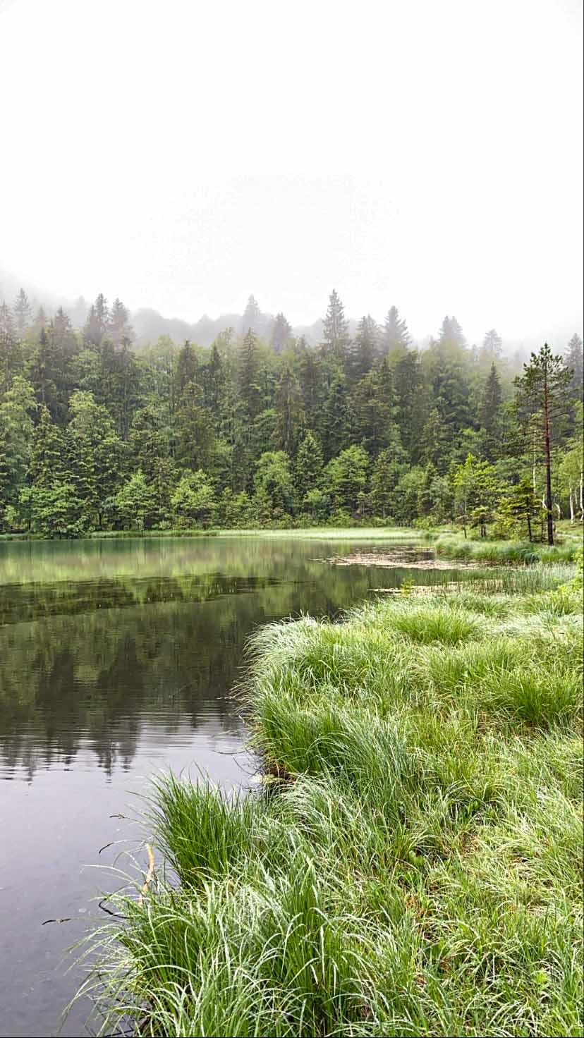 Die schönsten Seen in Oberbayern