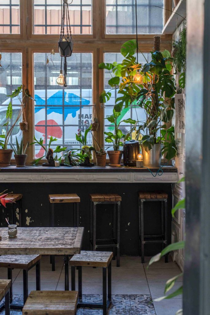 The Greens Berlin – Plants and Coffee